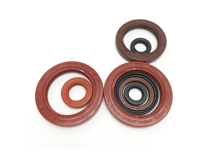 FKM Oil Seal